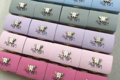 tooth-fairy-box